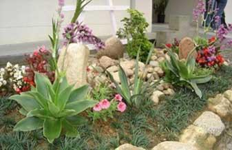 Costa Reis Paisagismo e Jardinagem