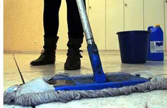 Pioneira Limpeza e Conservação
