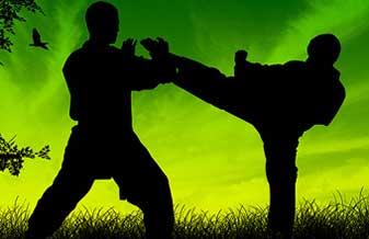 Federação de Taekwondo do Ceará